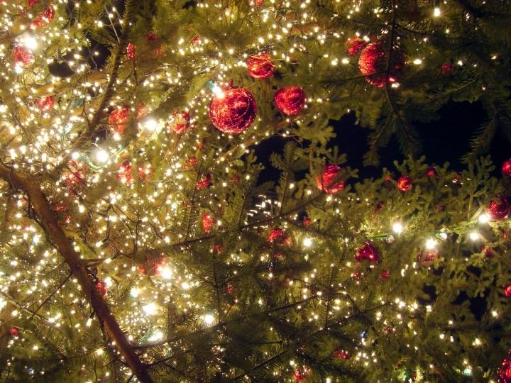 Mercatini di Natale a Latina e Provincia Foto